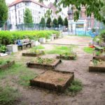 Ecole Adolphe Max primaire potager