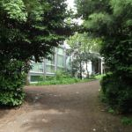 Institut Saint-Curé d'Ars Primaire Forest extérieur